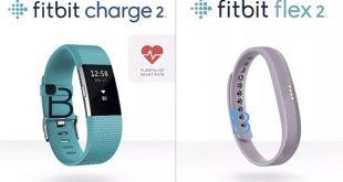 fitbit-charge-2-fitbit-flex-2