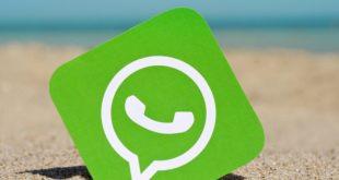 WhatsApp-1-830x400